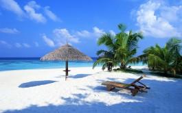 Hotels in Candolim Beach