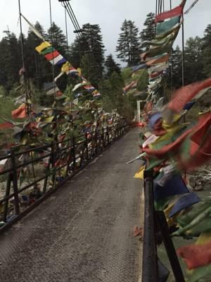 Aananda by the Brook, Haripur hotels, Himachal Pradesh, India
