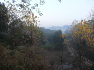 Hotel Prakriti Farm, Thaska Miranji, Punjab, India